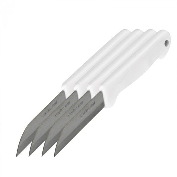 Kés szett   10809-4